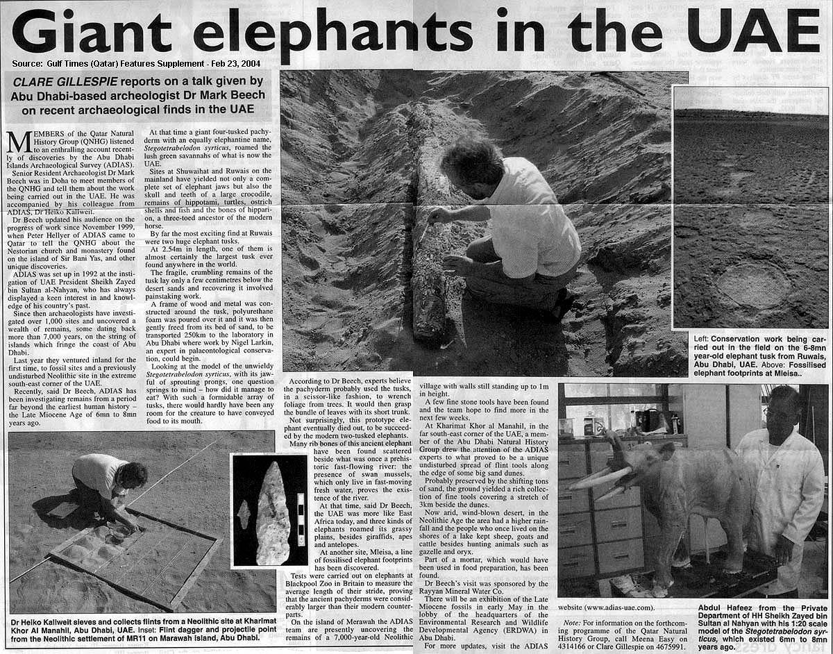 Gulf Times (Qatar), 23 February 2004